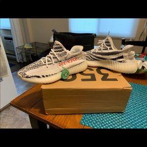 Zebra Yeezy